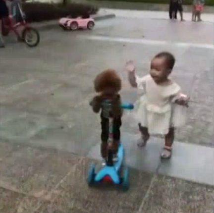 赤ちゃんから電動スクーターを略奪するプードル
