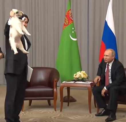 仔犬をプレゼントされるプーチン大統領