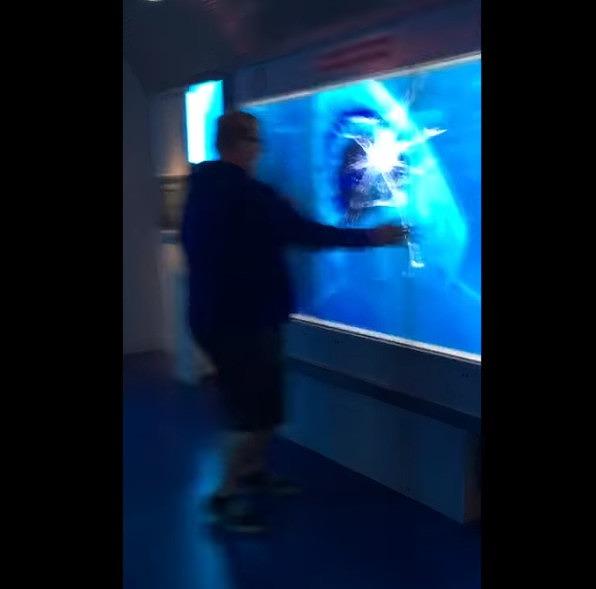 【出典:YouTube】4Kスクリーンに映ったサメに驚く男性