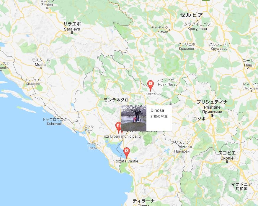 【出典:Googleマップ】デノサ村の水が溢れる木